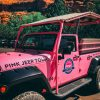 Pink Jeep Tours in Sedona with Adventures by Disney!
